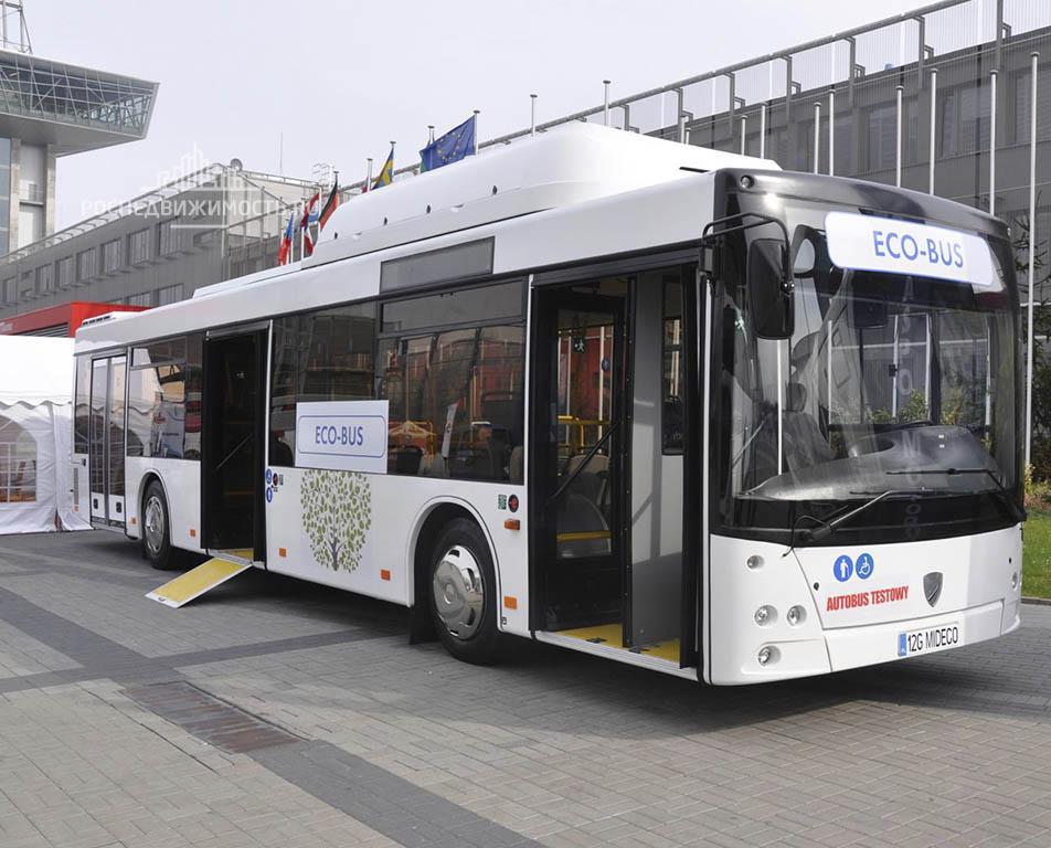 Между Петербургом и Кировском запустят эко-автобусы
